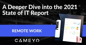 2021 IT Report blog post image