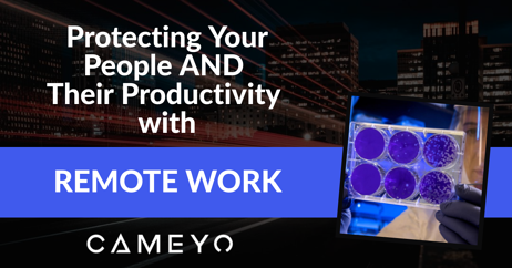 Protect People AND Productivity